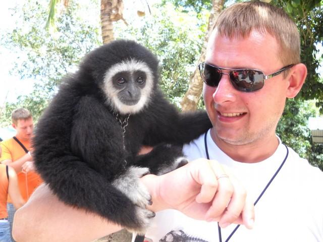 Налаживаю дружбу с обезьянами