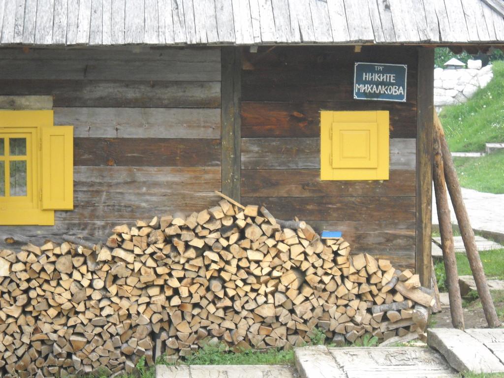 Михалков в Дрвенграде